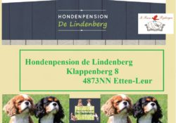 Lindenberg Hondenpension